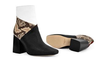 Calzado Dante - Zapatos para mujer